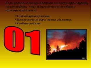 Сообщи причину вызова. Назови точный адрес места, где пожар. Сообщи своё имя.