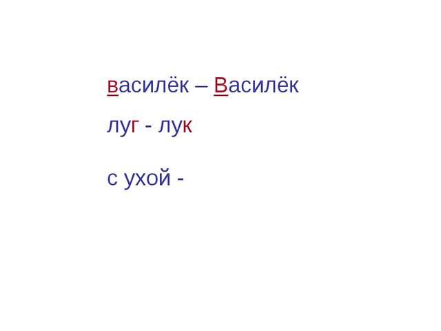 василёк – Василёк луг - лук с ухой -