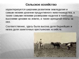 Сельское хозяйство характеризуется широким развитием земледелия и самым низки