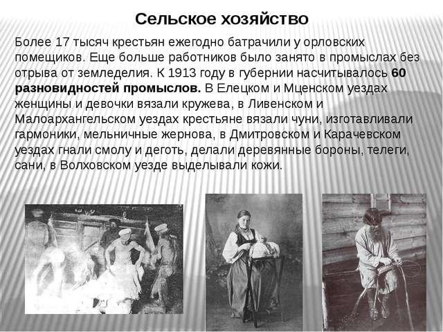 Сельское хозяйство Более 17 тысяч крестьян ежегодно батрачили у орловских пом...