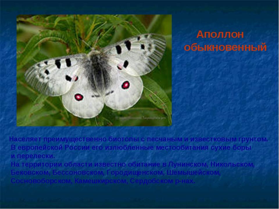 Аполлон обыкновенный Населяет преимущественно биотопы с песчаным и известков...