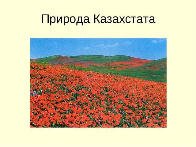 Природа Казахстата