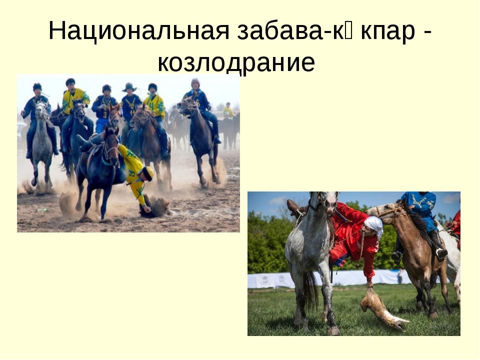 Национальная забава-көкпар - козлодрание