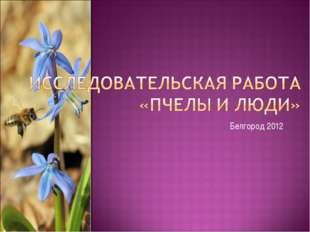 Белгород 2012