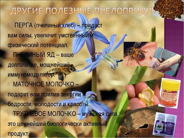 ПЕРГА (пчелиный хлеб) – придаст вам силы, увеличит умственный и физический п...