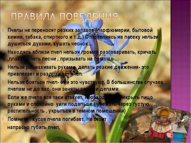 Пчелы не переносят резких запахов (парфюмерии, бытовой химии, табака, спиртно...