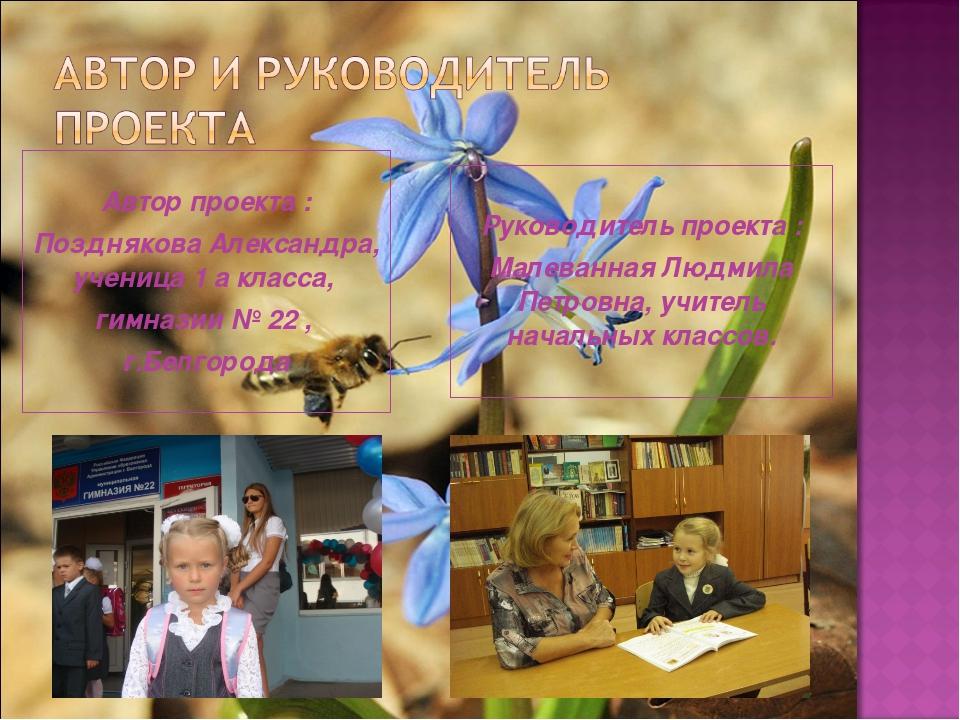 Автор проекта : Позднякова Александра, ученица 1 а класса, гимназии № 22 , г...