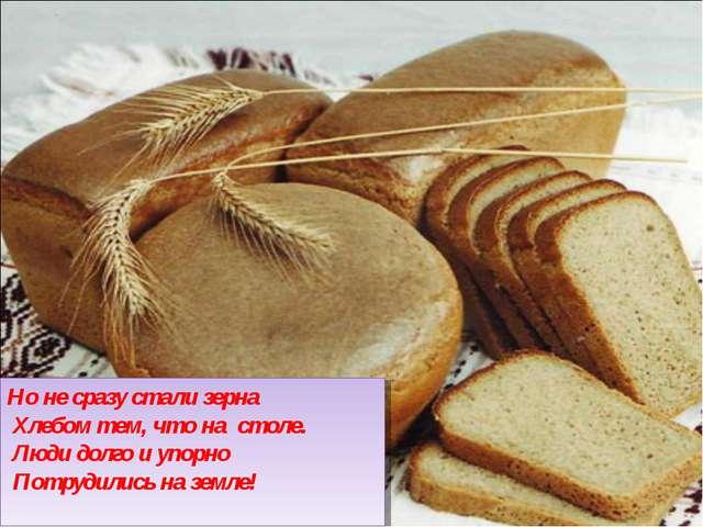 Но не сразу стали зерна Хлебом тем, что на столе. Люди долго и упорно Потру...