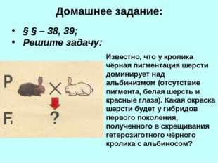 Домашнее задание: § § – 38, 39; Решите задачу: Известно, что у кролика чёрная