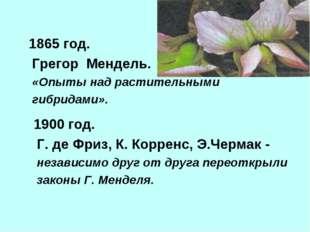 1865 год. Грегор Мендель. «Опыты над растительными гибридами». 1900 год. Г.