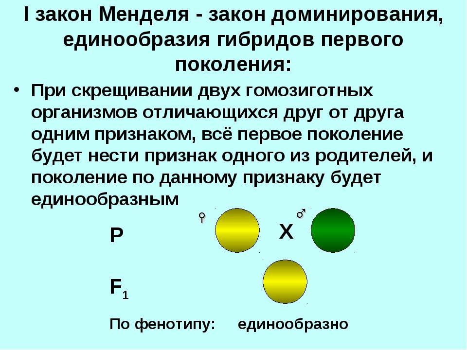 I закон Менделя - закон доминирования, единообразия гибридов первого поколени...