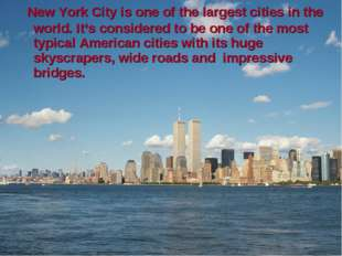 New York City is one of the largest cities in the world. It's considered to