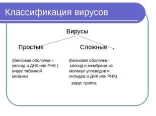 Классификация вирусов Вирусы Простые Сложные (белковая оболочка – (белковая о