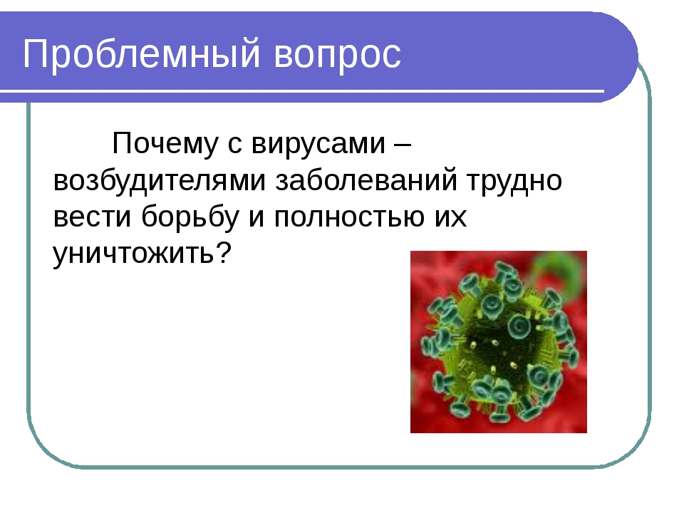 Проблемный вопрос Почему с вирусами – возбудителями заболеваний трудно вести...