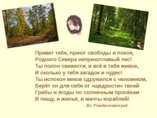 Привет тебе, приют свободы и покоя, Родного Севера неприхотливый лес! Ты пол