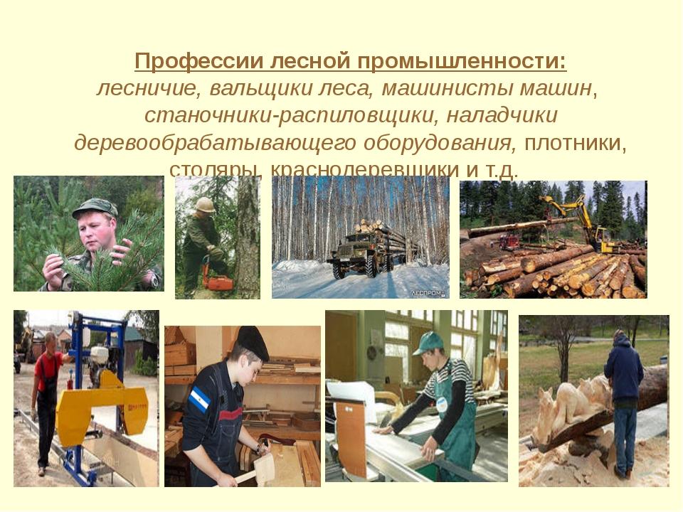 Профессии которые связаны с лесом