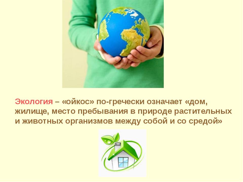 Экология – «ойкос» по-гречески означает «дом, жилище, место пребывания в прир...