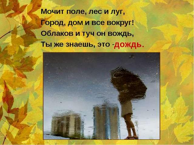 Мочит поле, лес и луг, Город, дом и все вокруг! Облаков и туч он вождь, Ты же...