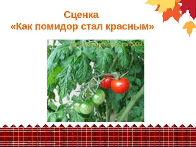 Сценка «Как помидор стал красным»