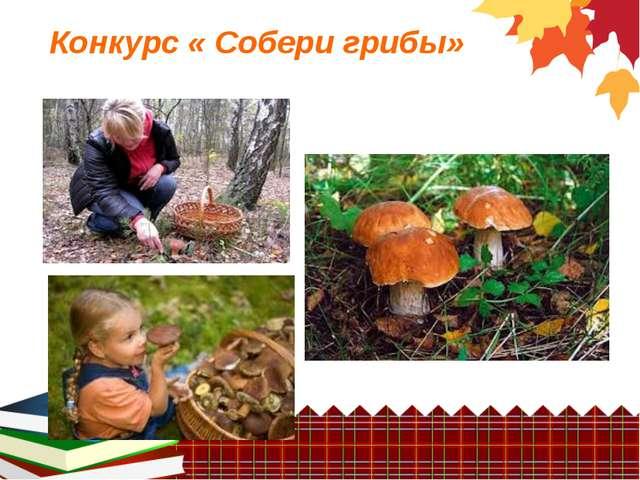 Конкурс « Собери грибы»