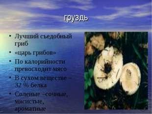 груздь Лучший съедобный гриб «царь грибов» По калорийности превосходит мясо В
