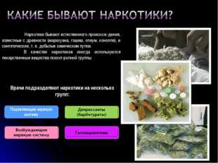 Наркотики бывают естественного происхож-дения, известные с древности (марих