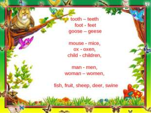 tooth – teeth foot - feet goose – geese mouse - mice, ox - oxen, child - chil