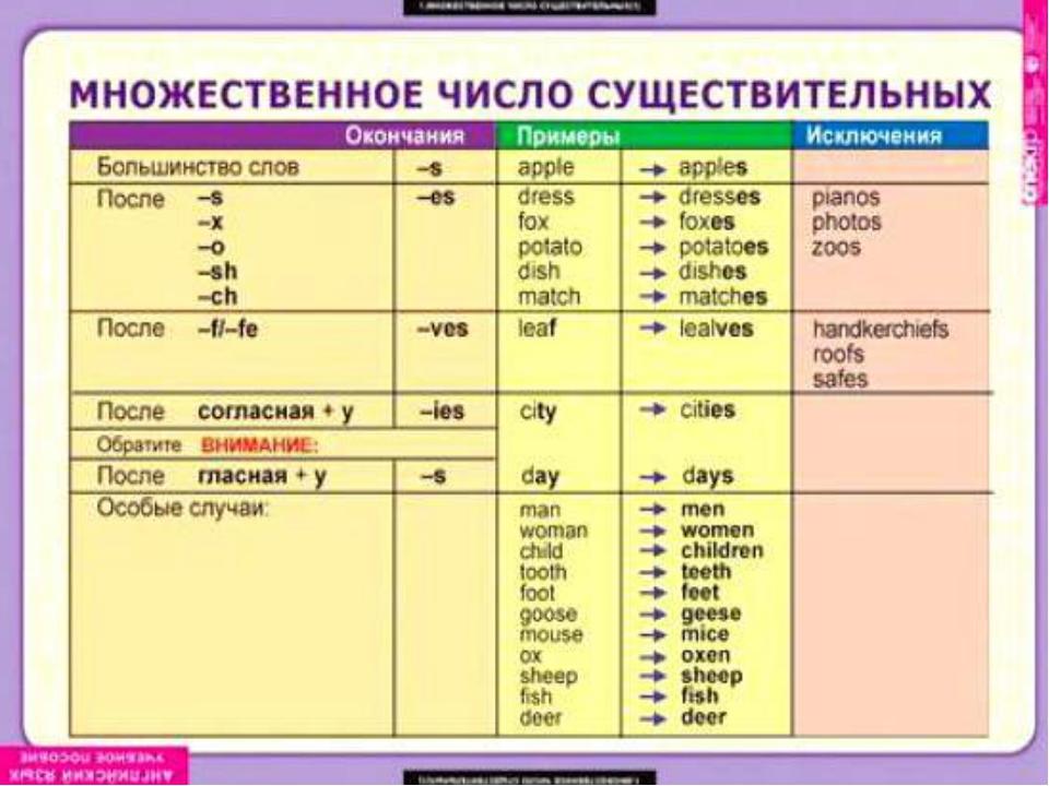 Множественное число в английском языке | Таблица с примерами