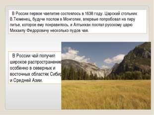 В России первое чаепитие состоялось в 1638 году. Царский стольник В.Тюменец,