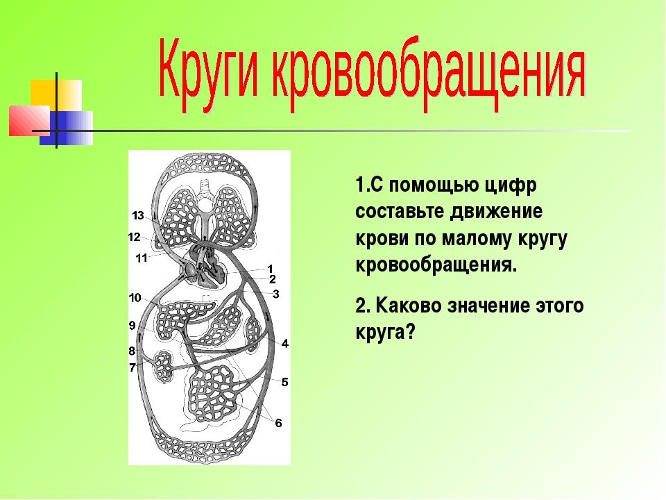 1.С помощью цифр составьте движение крови по малому кругу кровообращения. 2....
