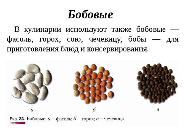Бобовые В кулинарии используют также бобовые — фасоль, горох, сою, чечевицу,...