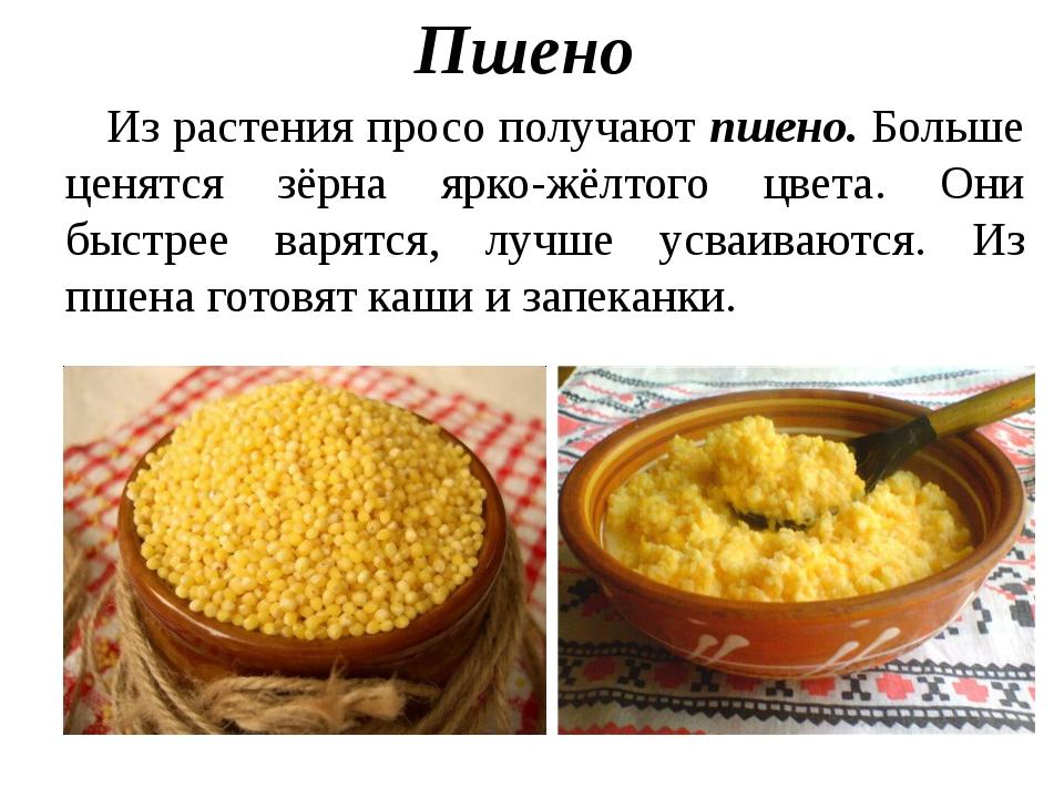 Пшенная рассыпчатая каша на воде рецепт с пошагово