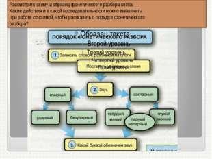 Рассмотрите схему и образец фонетического разбора слова. Какие действия и в к