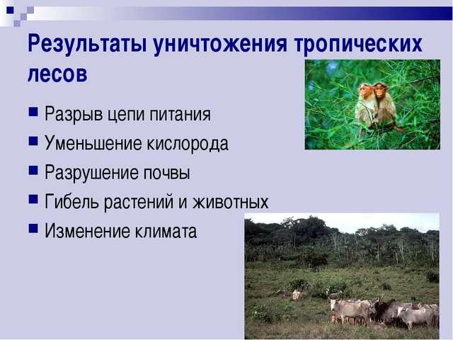 Результаты уничтожения тропических лесов Разрыв цепи питания Уменьшение кисло...