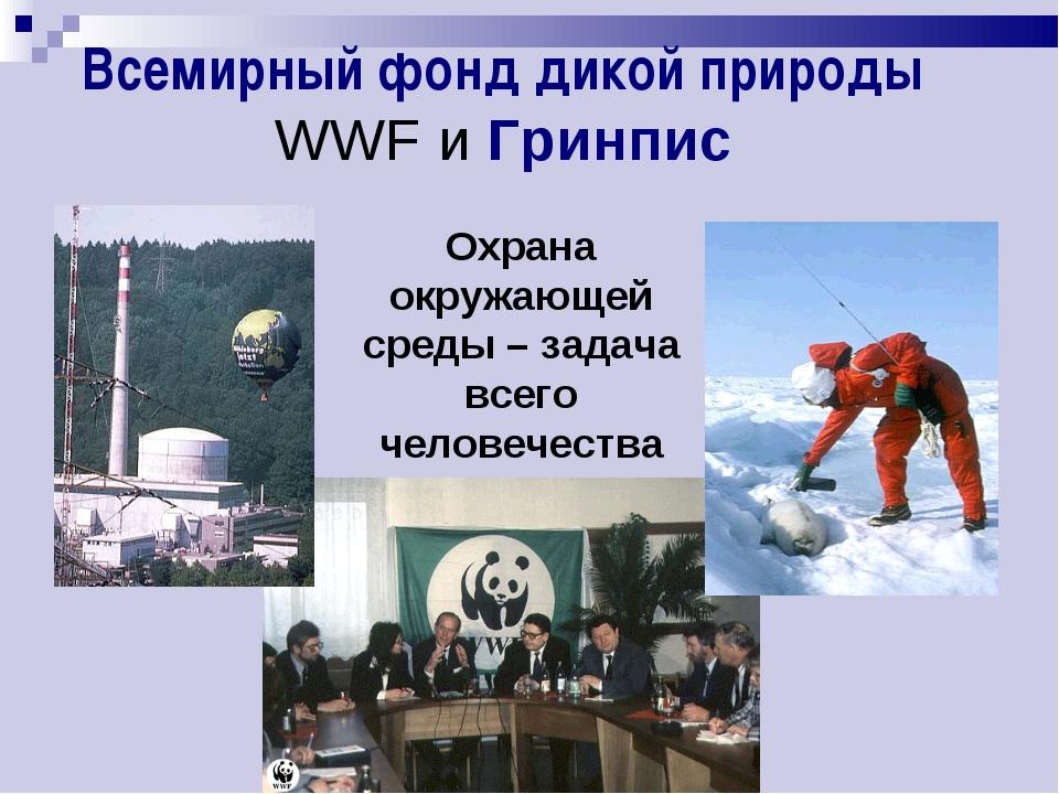 Всемирный фонд дикой природы WWF и Гринпис Охрана окружающей среды – задача в...