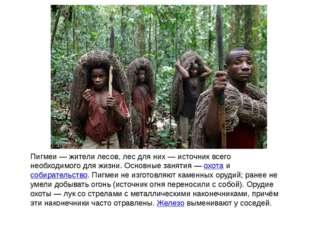 Пигмеи — жители лесов, лес для них — источник всего необходимого для жизни. О