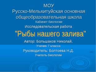 МОУ Русско-Мельхитуйская основная общеобразовательная школа Кабинет биологии