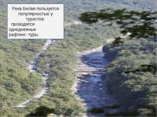 Река Белая пользуется популярностью у туристов: проводятся однодневные рафтин