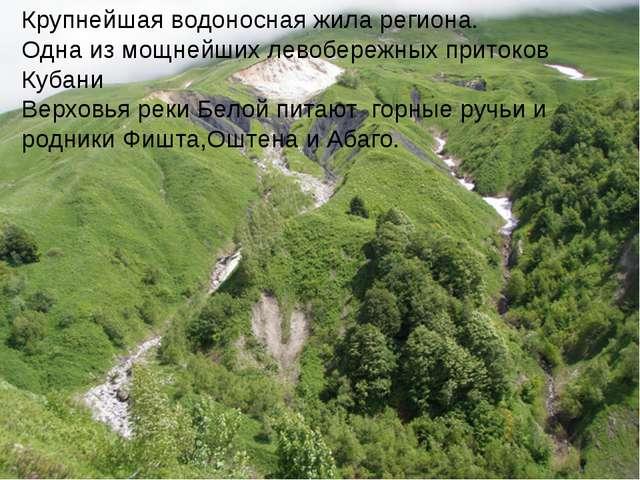 Крупнейшая водоносная жила региона. Одна из мощнейших левобережных притоков К...