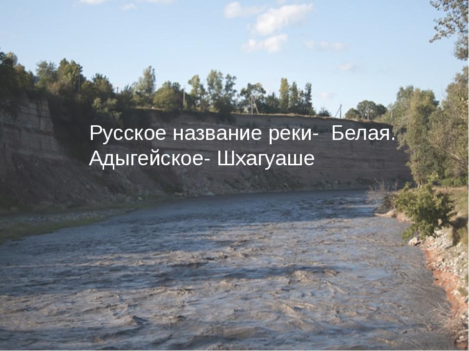 Русское название реки- Белая. Адыгейское- Шхагуаше
