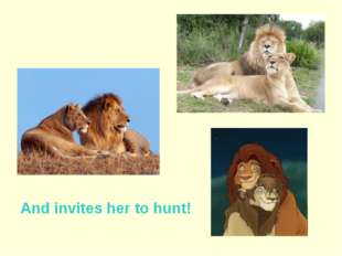 And invites her to hunt!
