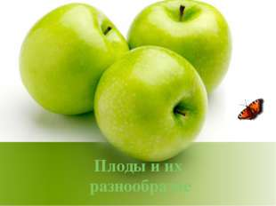 Плоды и их разнообразие