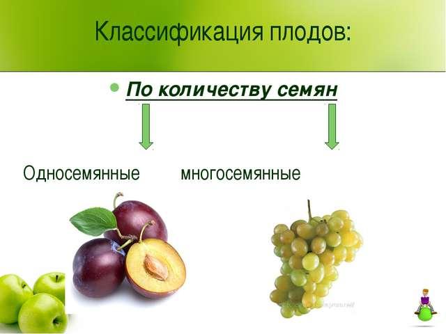 Классификация плодов: По количеству семян Односемянные многосемянные