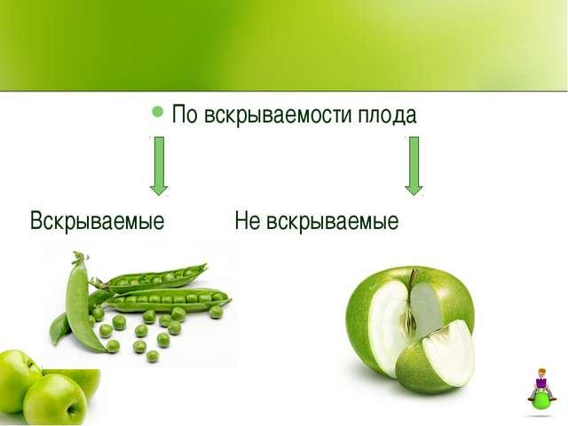 По вскрываемости плода Вскрываемые Не вскрываемые