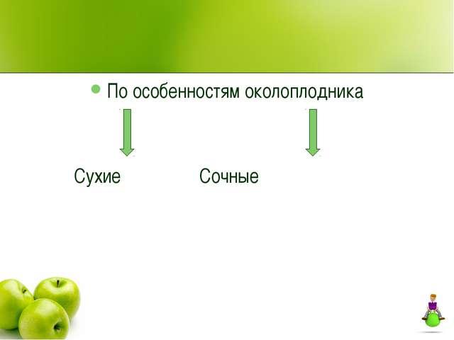 По особенностям околоплодника Сухие Сочные
