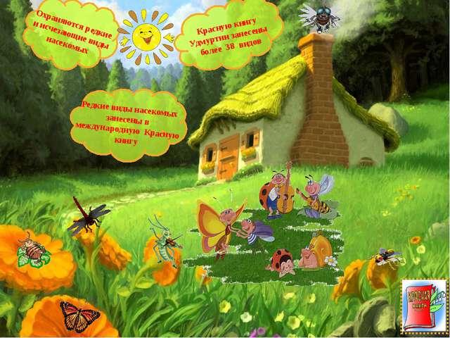 Охраняются редкие и исчезающие виды насекомых Красную книгу Удмуртии занесены...
