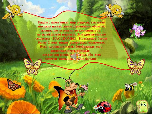 Рядом с нами живет мир существ, так мало похожих на нас своим строением и обр...