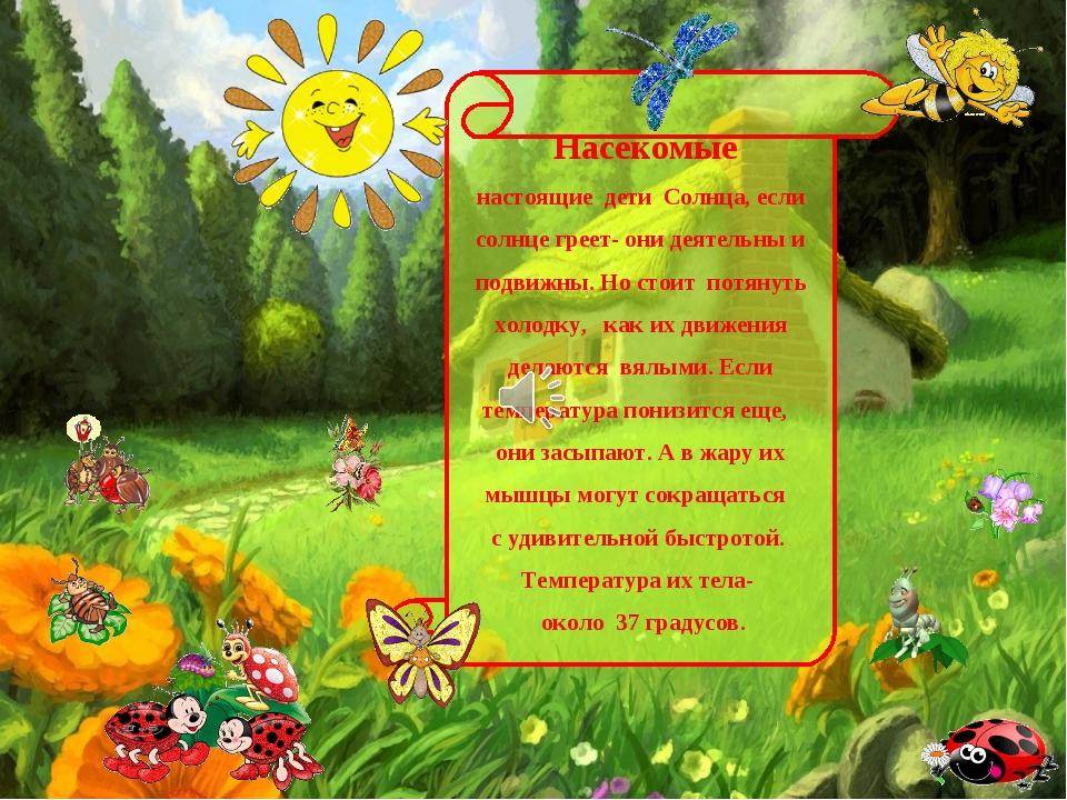 Насекомые настоящие дети Солнца, если солнце греет- они деятельны и подвижны...