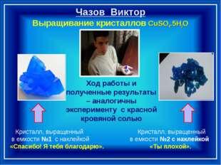Чазов Виктор Выращивание кристаллов CuSO4.5H2O Кристалл, выращенный Кристалл
