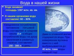 Вода в нашей жизни Вода занимает площадь 1387 млн. кв. км. В нашем организме